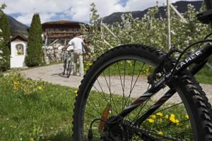 Gemütliche Touren zwischen den Bauernhöfen, Copyright: Roter Hahn, Frieder Blicke