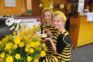 Fleißige Bienchen am Honigfest (c) nassfeld.at, Abdruck honorarfrei
