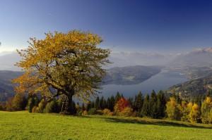 Herbst am Millstätter See (c) Kärnten Werbung Gerdl