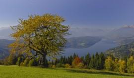 Herbststimmung am See  Copyright: Franz Gerdl, Archiv MTG