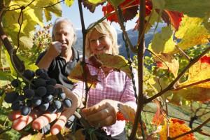 Im Weingarten (c) Rotre Hahn Frieder Blickle
