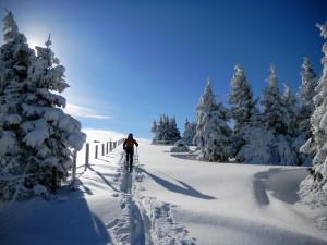 Image_Skitour_Steininger_4.12.2010_Fischbacher_Alpen-FischbacherAlpen 157groß