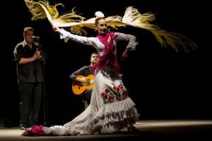 Gitarrenfestival_Flamenco_Javier_Conde_Manuela-Barrios